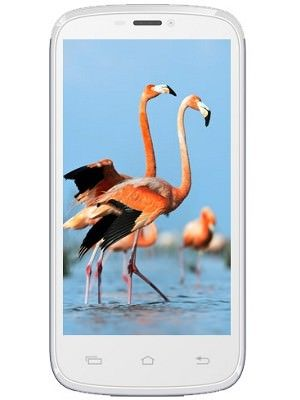 Celkon A119 Signature HD Price