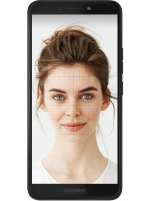 Gionee F205 Price