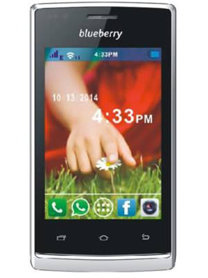 Blueberry S5.5 Price